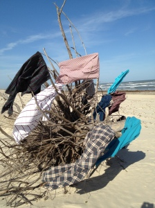 Kelly Scott's display of Hook's shirts (apparently I tossed out more than just the plaid!) on driftwood in Port Aransas.